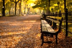 central-park-new-york-autumn-sunset-new-york-sunset-park-city